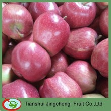 Fresh Red Chief Huaniu Apples