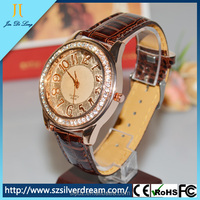 Promotional Waterproof And Mix Colors Cheap Vintage Leather Watch