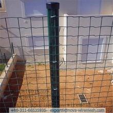 Modern designs galvanized steel dutch mesh fence for garden