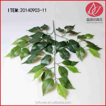 Special best sell garden decoration artificial ficus tree