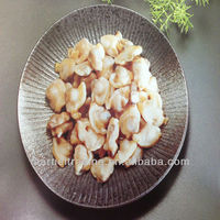 autumn cropping frozen clam