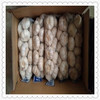 4.5-6.0 cm Normal Garlic in 10KG Carton For Export