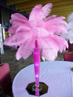 Ostrich feather real ostrich feather decorative ostrich feather centerpiece