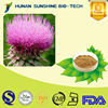 100% natural Herbal Extract Silymarin / Milk Thistle Extract Powder Help Protect Liver