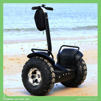 2015 cheap pro electric scooter 1000w
