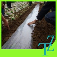 Easy application and removal plastic agricultural mulch film