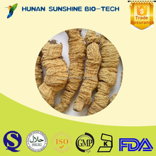 2015 hot product high quality Radix moridae officinalls dried root