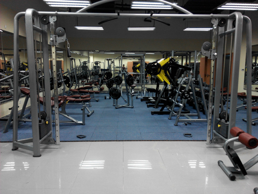 Selection Tk Gym Equipment And Fitness Equipment From