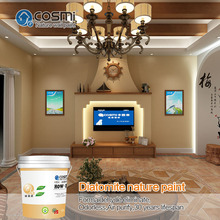 Wall interior paint color