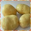 Organic potatoes cheap price of fresh potatoes