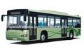 Autobús de la ciudad SHACMAN en venta