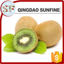 Import frozen dried kiwi fruit