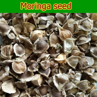 Thailand Moringa Seed with Multiple Functions