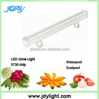Healthy profitable indoor herb plant hydroponics grow led hydroponic cultivator tube led lighting