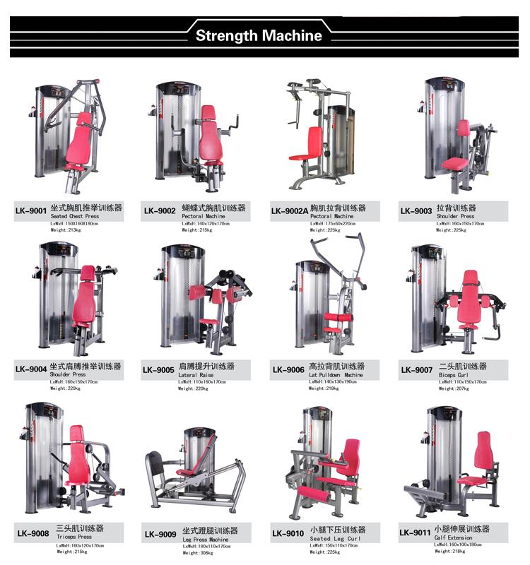 contenidos le gym