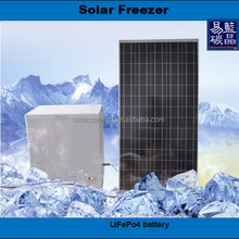 Integrated design 159L DC solar freezer