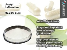 700 mg ISO GMP Certificate and OEM Private Label Acetyl L-carnitine Chinese Herbal Weight Loss Pills