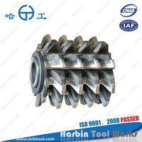 Chinese Manufacturer, HSS m2 Heavy Cutting Hob, inserted blades gear hob