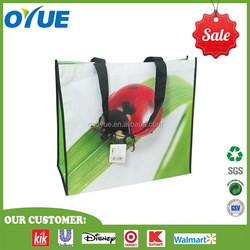 Colorful Shopping Bag/Non Woven Bag /Reusable Bag