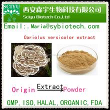 Coriolus Versicolor Extract / Yunzhi Mushroom Extract