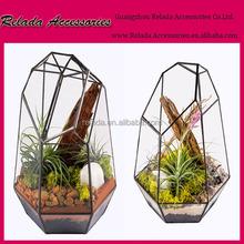 Factory Wholesale Hand Blown faceted glass terrarium container using Geometric Succulent Terrariums for home garden decoration