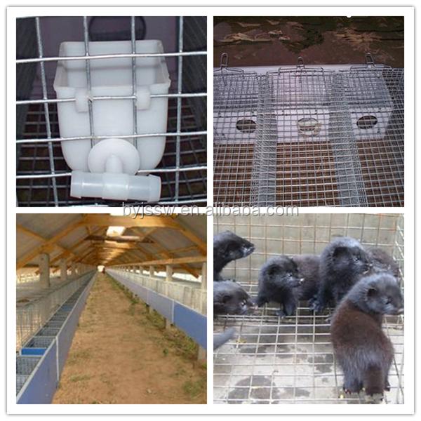 mink cage17.jpg
