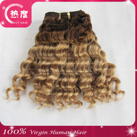 6A grade Hair Brazilian Virgin Hair Ombre Deep Wave Cheap 3 Bundles Ombre Brazilian Deep Curly Hair Weave