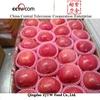 Wholesale prices fuji apple fruit