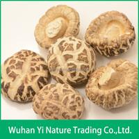 Chinese Magic Mushroom Dried,Flower Mushroom