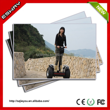 Top Level hot sell self balance electric scooter have CE/RoHS/FCC ,new brand motorcycle