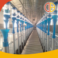 Poultry equipment pig farming equipment with the latest design