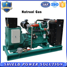 Professional Factory Customize CNG Natural Gas and Methane Gas Powered Generator Set