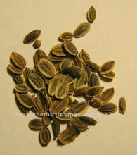 Suppliers Of 2012 Top Quality & Lover Price for Dill Seed Oil