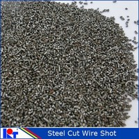 sand blast 304 material stainless steel cut wire shot /stainless steel shot