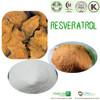 100% Natural Resveratrol Extract/Resveratrol Powder/water-soluble resveratrol