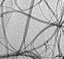 Single-Walled Carbon Nanotubes (SWNTs)