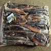 New coming Frozen squid Argentina squid 100-150G