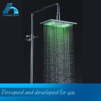 Premium Quality Classic Design Lowest Price Spa Ceiling Mounted Led Rain Shower Head