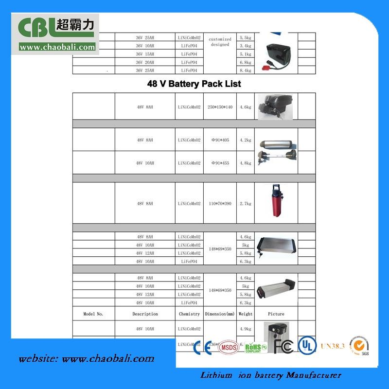 CZW  li-ion 48v 10Ah dolphin type rechargeable ebike battery with high power