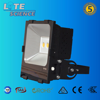 100-277V outdoor cob rechargeable led floodlight 150w with Bridgelux led and MeanWell driver
