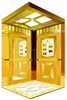 Newest design high quality cheap residential lift elevator