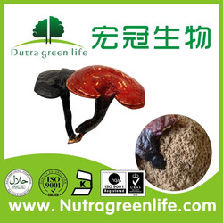 Lucid Ganoderma Extract/Ling Zhi Extract Powder