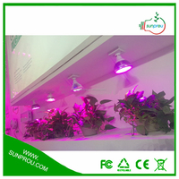 Online shopping hong kong grow tent indoor new products led grow light