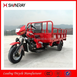China OEM Manufacturer Hot Sale 250Cc Motorcycle For Sale/250Cc Three Wheel Car/New Three Wheel Motorcycle