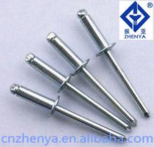 Blind rivet fasteners rivet head nail