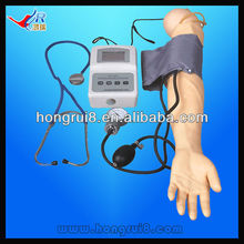 ISO Advanced Blood Pressure Training Arm Simulator, Nursing Training model