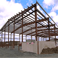 Low Cost and Fast Assembling Prefabricated steel structure building, container homes