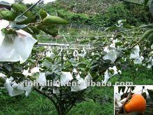 Anti- uv pp tela no tejida para la cubierta de frutas