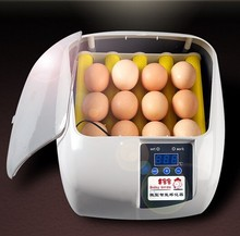 Baby birds 12 egg incubator for sale