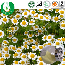 High quality chamomile/High quality chamomile extract/ Factory Supply Chamomile Flower Extract/Chamomile Extract- Apigenin